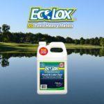 EcoLox Dye Blue Pond Dye